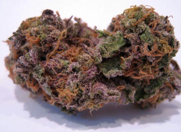Buy Granddaddy Purple Online