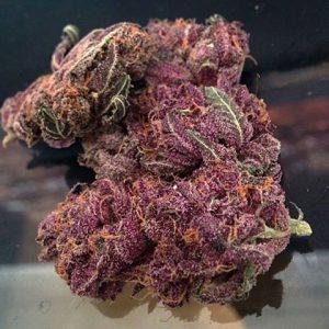 Buy Purple OG Kush Online