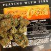 Orange Cookies Jungleboys